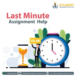 Last-Minute-Assignment-Help
